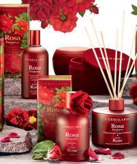 Bíbor Rózsa
